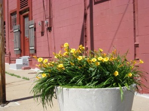 Planter on the corner